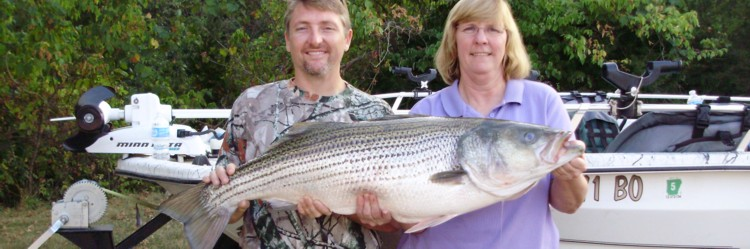 Beaver lake striper guide beaver lake arkansas striper for Beaver lake striper fishing
